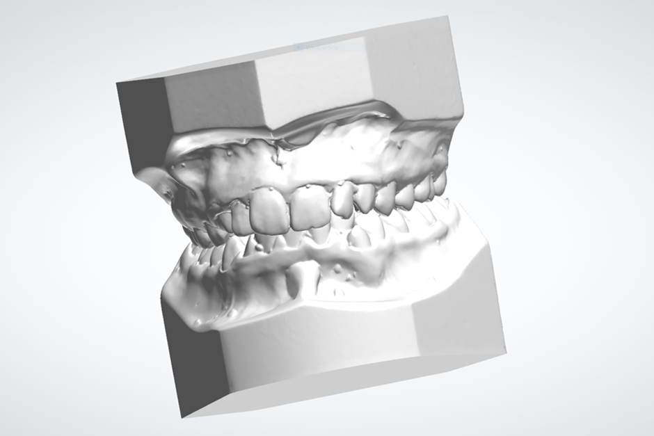 Atriculated 3D Scans